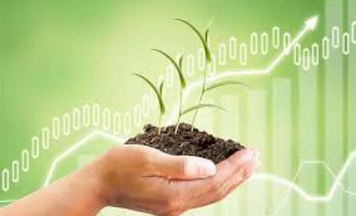 "Agro Start-up Ecosystem @ SIGCE<span class=""rating-result after_title mr-filter rating-result-4552"">	<span class=""mr-star-rating"">			    <i class=""fa fa-star mr-star-full""></i>	    	    <i class=""fa fa-star mr-star-full""></i>	    	    <i class=""fa fa-star mr-star-full""></i>	    	    <i class=""fa fa-star mr-star-full""></i>	    	    <i class=""fa fa-star-o mr-star-empty""></i>	    </span><span class=""star-result"">	4/5</span>			<span class=""count"">				(1)			</span>			</span>"